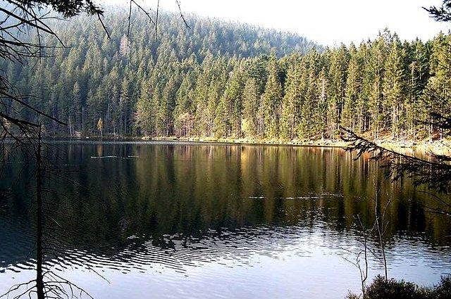 Laghi della Selva Boema