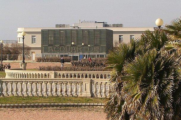 Acquario di Livorno